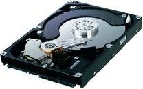 SAMSUNG HDD 500GB SATA 3,5 HD503HI