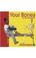 Your Bones (Bridgestone Science Library: Your Body)