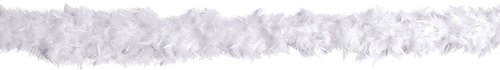 Beistle Fancy Feather Boa, 40gm/6-Feet