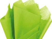 "100 Sheets - Bright Lime Tissue Paper 15"" X 20"" front-691473"