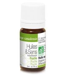 Huiles & Sens - Hemlock spruce essential oil (organic) - 5 ml [Personal Care]