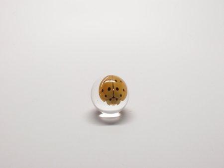 Lucite Treasures Mini Ladybug Sphere