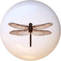 Dragonflies Chocolate Red Dragonfly Drawer Pull Knob
