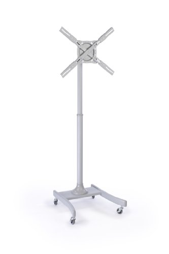 Cheap Steel Mobile TV Stand with Wheels for a 27 to 42 inch Monitor, Height-Adjustable, Rotating and Tilting – Silver (B006YBL08A)