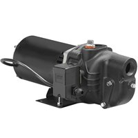 Wayne SWS100 - 1 HP Cast Iron Shallow Well Jet Pump - SWS100