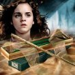 Harry Potter Hermoine Grangers Wand in Ollivanders Box