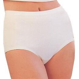 Hanes Women's Classic Briefs (White 3-Pack)