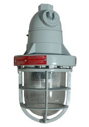 Class 1 Division 1 10 Watt Explosion Proof Led Light - 120-240Vac Or 12/24 Vdc - White Or Color(-Pen