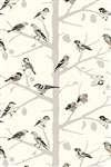 Schumacher Wallpaper | 5005030 | A-Twitter | Winter | Mahones Wallpaper Shop