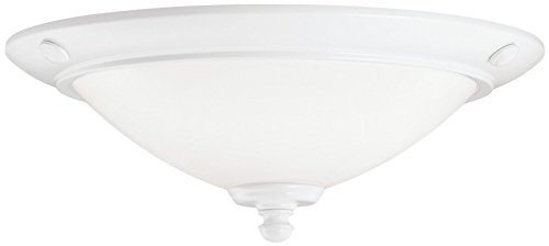 380107WH Universal 2LT CFL Ceiling Fan Light Kit, Powder Coat White Finish with Cased Opal Glass Reviews