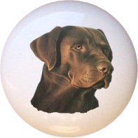 Chocolate Lab Dog Dogs Drawer Pull Knob