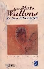 Les Mots Wallons - Tome 1