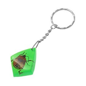 Stylish Insect Embedded Inside Amber Style Key Ring Chain