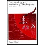 img - for The Physiology & Biochemistry of Prokaryotes by White,David. [1999,2nd Edition.] Hardcover book / textbook / text book
