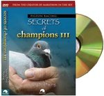 Pigeon Racing: Secrets of Champions III: Young Bird Racing