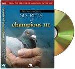 Pigeon Racing: Secrets of Champions III: Young Bird Racing
