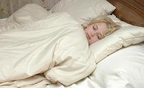 Pure Rest Certified Organic Merino Wool Comforter King