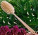 Skin Brush with Long Handle -Robert Gray Cleansing Brand: Holistic Horizons