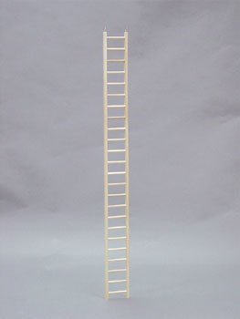 Wooden Ladder, 48 Inches