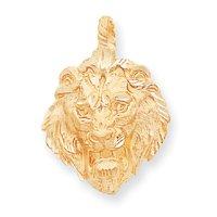 14k Lion Charm - Measures 36.3x26.2mm - JewelryWeb