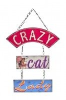 crazy-cat-lady-funny-chain-style-hanging-plaque-sign-for-cat-lovers