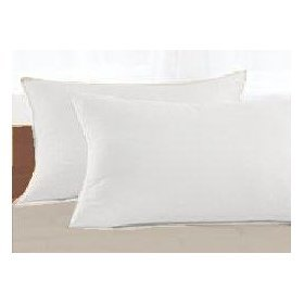 Natural Organic Eco-Friendly 2-Pack Alternative Down Standard Pillow By OrganicTextiles