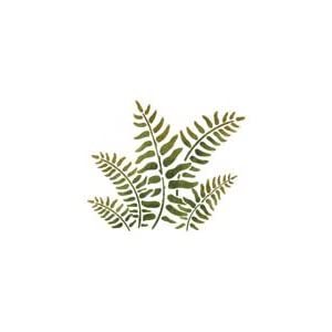 Amazon.com: Fern Stencil - Stencil only - Plastic
