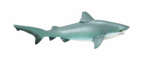 サファリ レプリカ オオメジロザメ