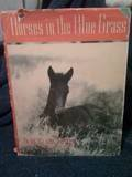 Horses in the Blue Grass by Thayer, Bert Clark