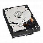 WESTERN DIGITAL 3.5インチ内蔵HDD 1TB Serial-ATA 7200rpm 32MB WD1001FALS
