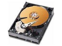 Click to buy MicroStorage for Acer Veriton 3600GT/V 160GB 3,5