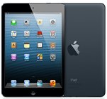 Apple iPad Mini - Black (16GB, Wifi)