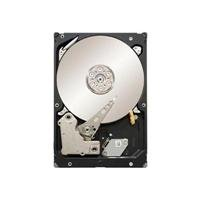 Seagate Constellation ES 1 TB 7200RPM 6 Gb/s SATA 64MB Cache 3.5 Inch Internal Bare Drive ST1000NM0011