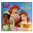 Disney-Princess-Scrub-bubble-Bath-Book-~-Magical-Dreams
