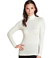 Heatgen™ Polo Neck Thermal Top