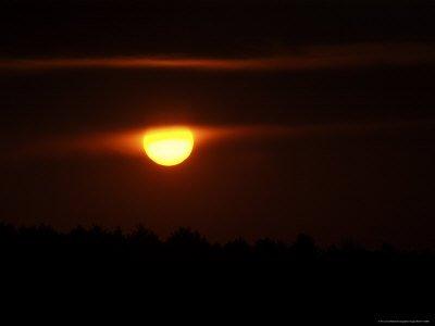 Sunset at Walden Pond