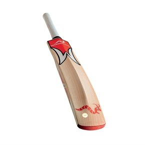 Woodworm iBat Cricket Bat FLAME Short Handle