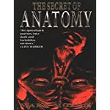 The Secret of Anatomyby Mark Morris