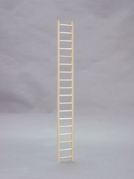 Wooden Ladder- 36 Inches