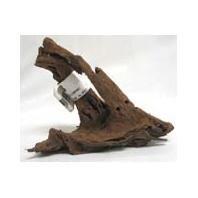 Malaysian Driftwood, Small