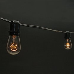 Commercial Edison String Lights, 24 Clear Bulbs, 48 Ft. Black Wire