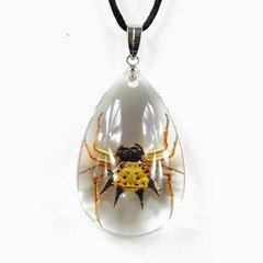 REALBUG Spiny Spider, Necklace, Clear, Small