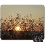 a-fan-of-sand-flowers-for-sun-mouse-pad-mousepad-sunsets-mouse-pad