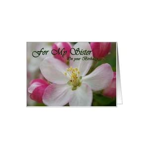 Amazon.com: Birthday for Sister: apple blossoms Card: H