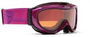 Skibrille Alpina Comp GTV schwarz matt 2012