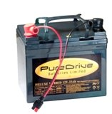 36 Hole Golf Trolley Battery 12v-33Ah (Torberry)