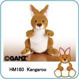 Webkinz Kangaroo (カンガルー)