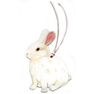 White Bunny Gift Tags, Pack Of 10 front-523946