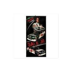 Dale Earnhardt Jr. Nascar Banner by SLC