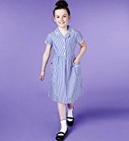 Pure Cotton Easy to Iron Stripe Dress